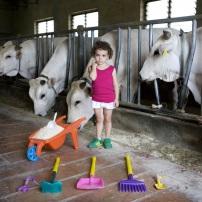 Toy Stories Alessia - Castiglion Fiorentino, Italy